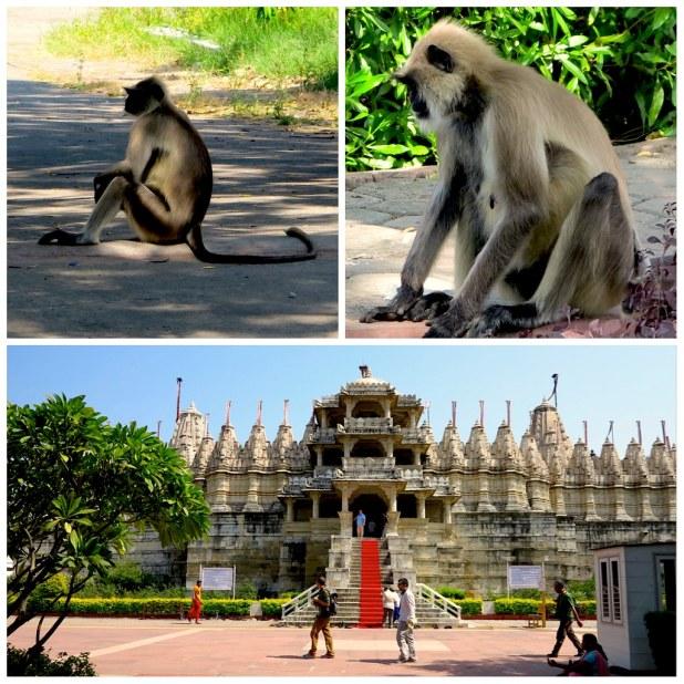 Templo Ranakpur
