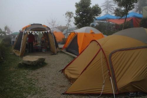 新竹尖石 紅薔薇露營