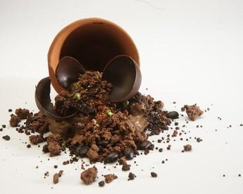 Tierra de Cacao Alto