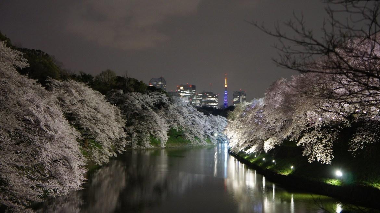 Chidorigafuchi and Tokyo Tower