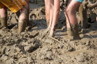 田裡的孩子-泥巴裡找樂趣,焢窯和採蓮藕