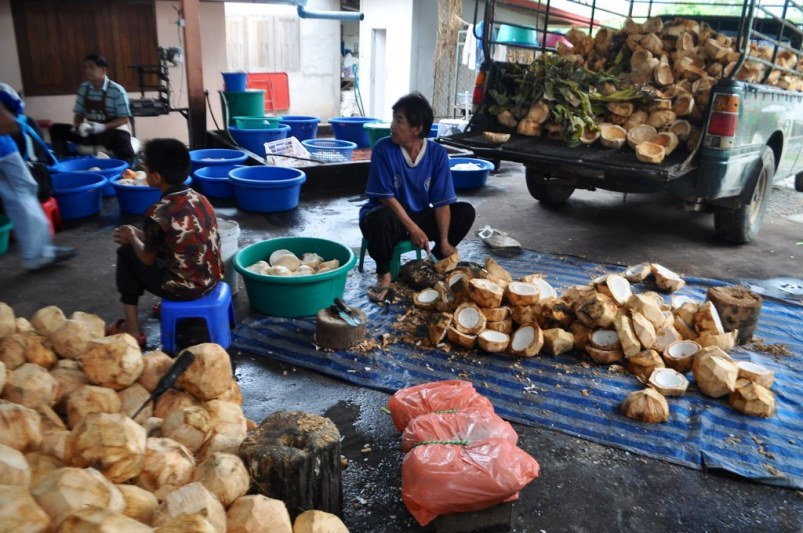 Coconuts are split and the meat is sliced out in Chiang Khan, Loei, Thailand.