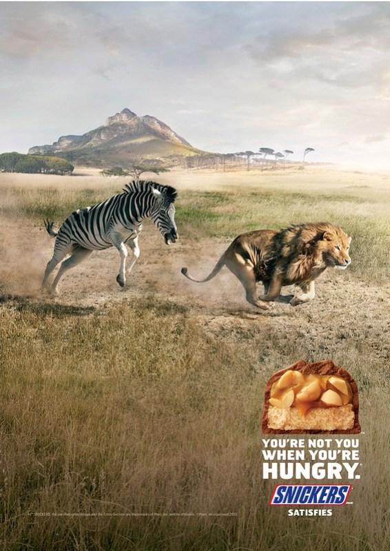 Snickers - Zebra
