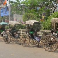Backpacking India: Kolkata and the Sundarbans