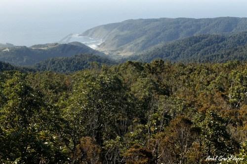 Valdivia - Parque Oncol - Mirador Pilolcura