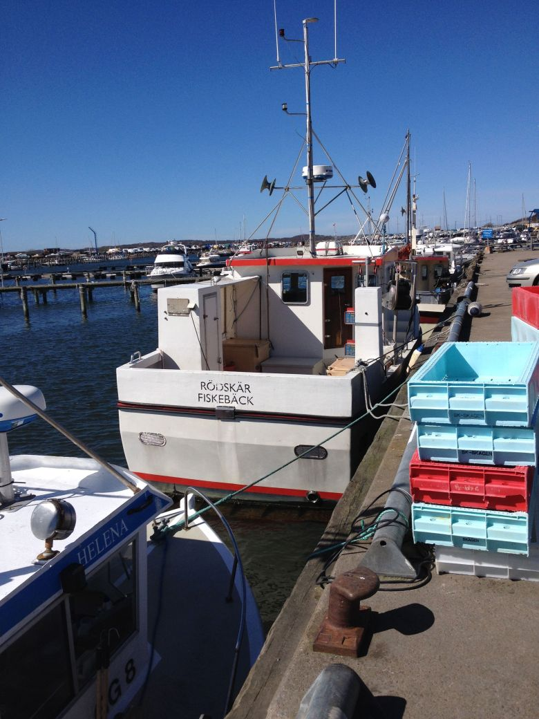mindre_båtar_fiskeback12