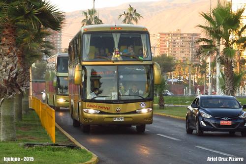 Ramos Cholele - Iquique (Chile) - Marcopolo Paradiso 1550 LD / Mercedes Benz (CFWD84)