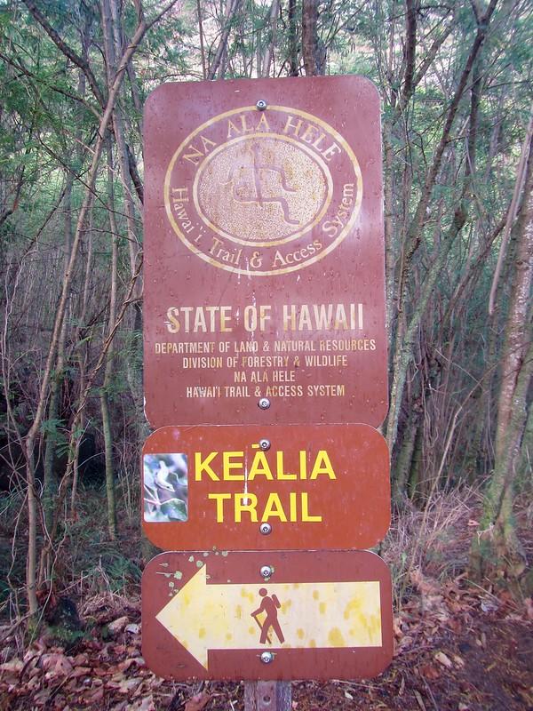 Picture fro the Kealia Trail