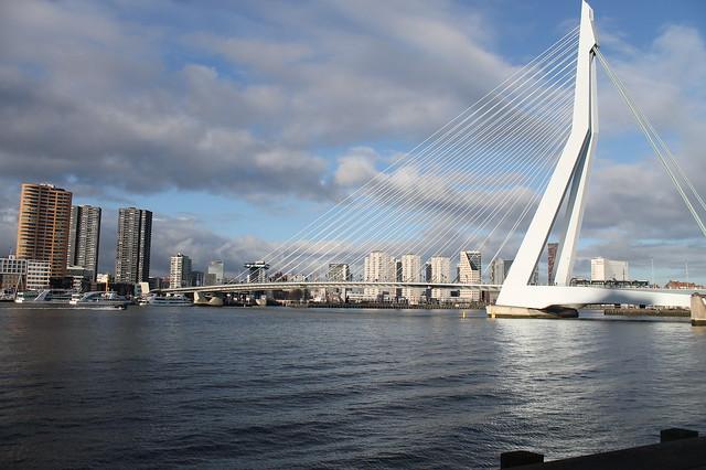 Puente de Erasmo, Róterdam
