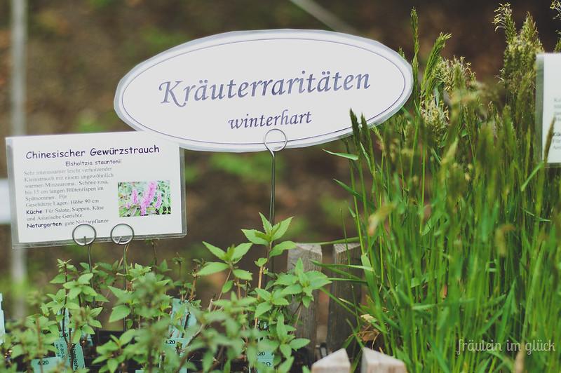 botanischergarten (1 von 6)