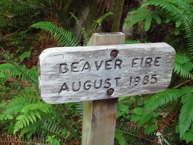 Beaver Fire Sign