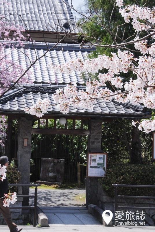 京都赏樱景点 哲学之道 23