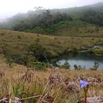 12 Viajefilos en Sri Lanka. Nuwara Eliya 23