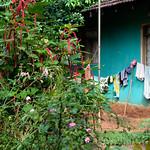07 Viajefilos en Sri Lanka. Pueblos 22