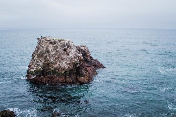 Ocean Andrew Molera State Park California