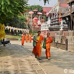 01 Viajefilos en Chiang Mai, Tailandia 017