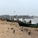 01 Viajefilos en Sri Lanka. Negombo 12