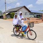 01 Viajefilos en Koh Samui, Tailandia 113