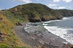 Cape Schanck (1)