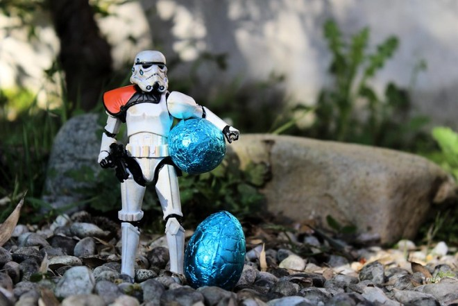 These are the chocolate eggs we're looking for