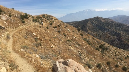 PCT Day 19
