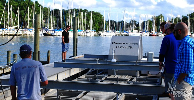 OysterTour14