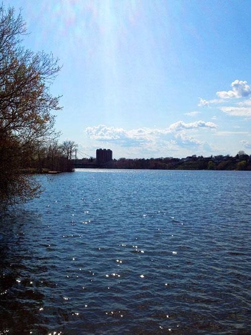 parc-nature-ile-visitation-montreal-5