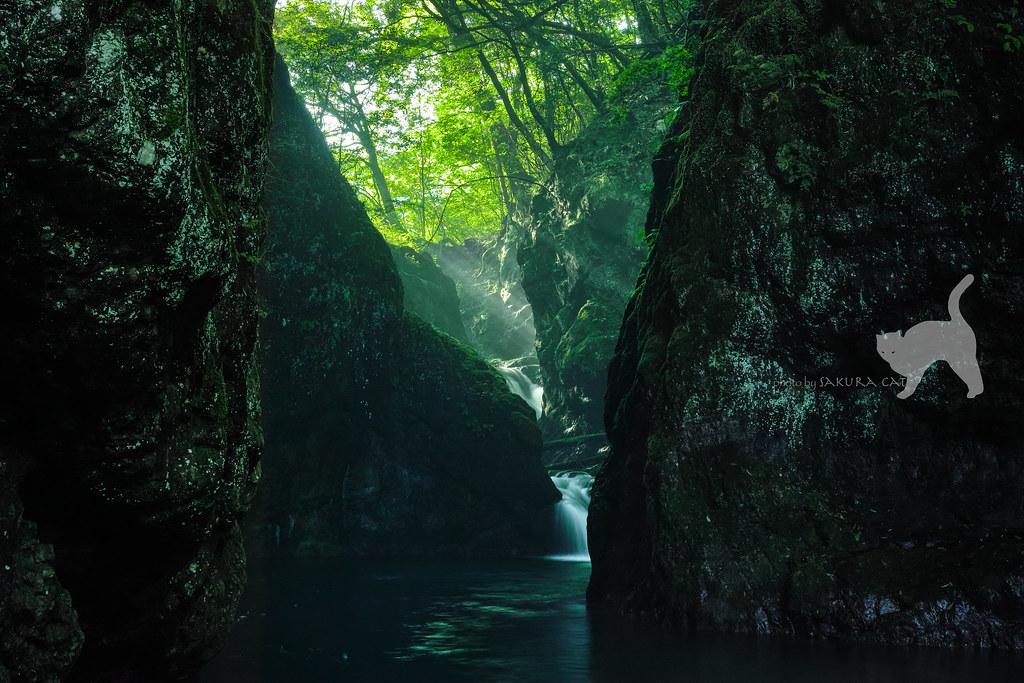 美霞洞渓谷 | 香川県