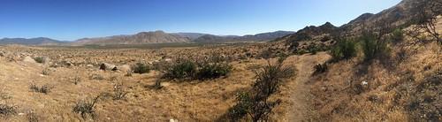 Desert gets real