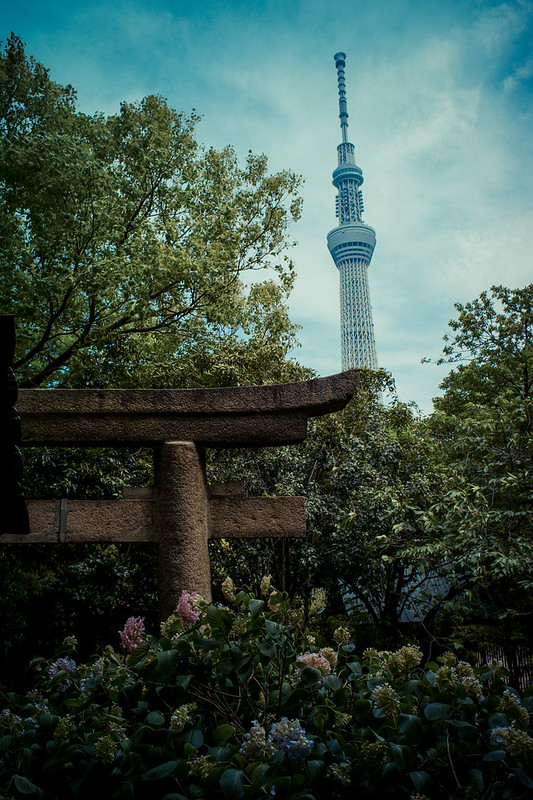 TOKYO LeicaM-E L1002257-2