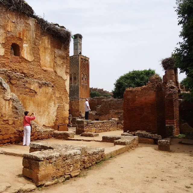 #Chellah in Rabat, Morocco