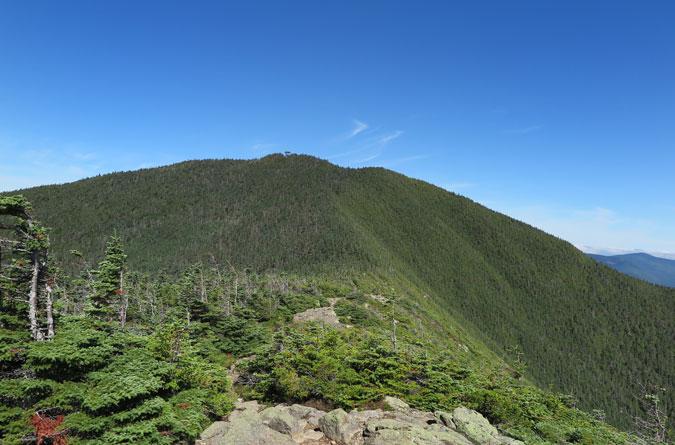 Signal Ridge View Carrigain Summit