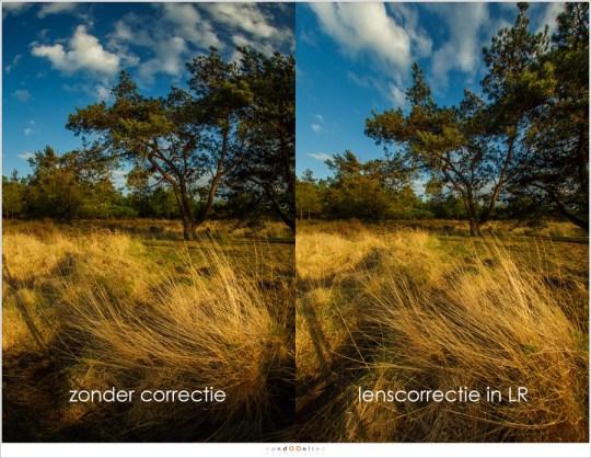 Lenscorrectie in LightRoom mag niet uitgevoerd worden, zeker bij fish-eye objectieven. Het corrigeren van perspectief levert teveel vervorming op voor een goed resultaat