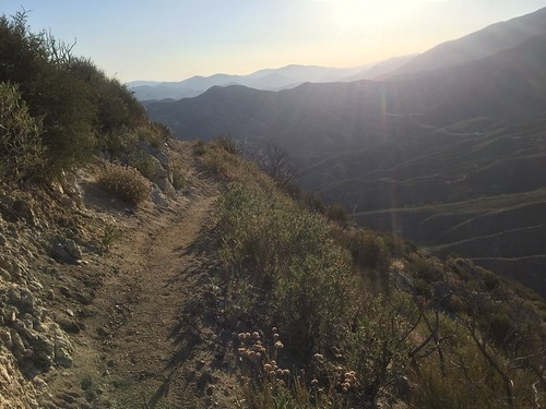 PCT Day 33