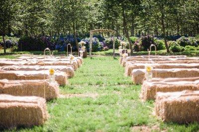 wedding on Hydrangea Ranch on the Oregon Coast