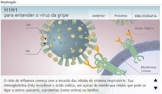 Replicação do Vírus Influenza A