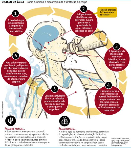 Como funciona o mecanismo de hidrata o do corpo baixa for Importancia de oficina wikipedia