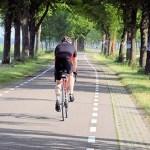 4 Mentiras de la nutrición deportiva desmitificadas | Salud