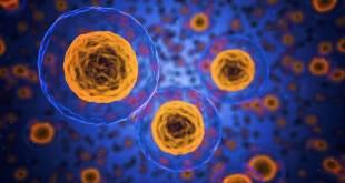 Teknologi Mikroenkapsulasi untuk Penghantaran Obat Terkendali