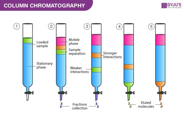 Skeamatik Kromatografi Kolom