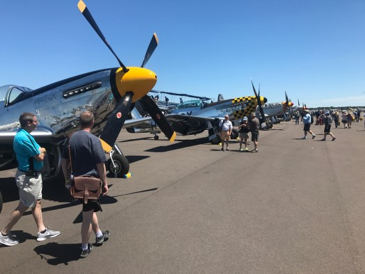 P-51s in a row at Sun N Fun.