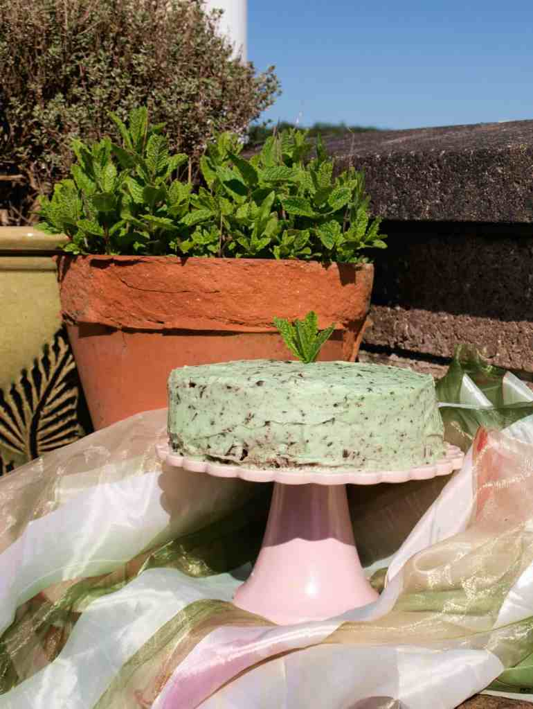 Fresh Mint Chocolate Cake