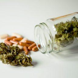 Feds to Study Medical Marijuana's Effect on Opioid Use