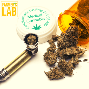 Cannabis Seeds Shipped Directly to Your Door in Bethesda, MD. Farmers Lab Seeds is your #1 supplier to growing Cannabis in Bethesda, Maryland.