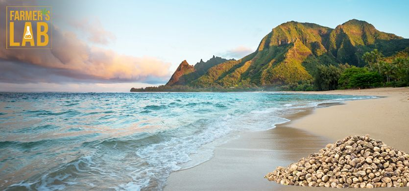Buy Cannabis (Marijuana) Seeds Shipped Directly to Kaneohe Station, Hawaii. Growing weed in Kaneohe Station, HI is now easy with the help of Farmers Lab Seeds.