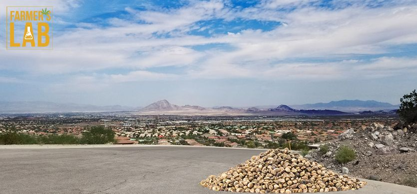 Buy Cannabis (Marijuana) Seeds Shipped Directly to Mesquite, Nevada. Growing weed in Mesquite, NV is now easy with the help of Farmers Lab Seeds.