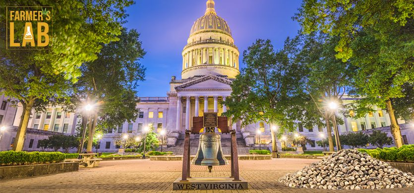 Buy Cannabis (Marijuana) Seeds Shipped Directly to St. Albans, West Virginia. Growing weed in St. Albans, WV is now easy with the help of Farmers Lab Seeds.