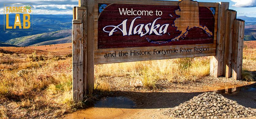 Buy Cannabis (Marijuana) Seeds Shipped Directly to Wasilla, Alaska. Growing weed in Wasilla, AK is now easy with the help of Farmers Lab Seeds.