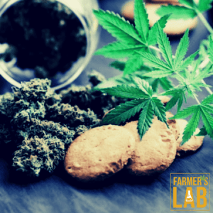 Cannabis Seeds Shipped Directly to Your Door in Fredericton, NB. Farmers Lab Seeds is your #1 supplier to growing Cannabis in Fredericton, New Brunswick.