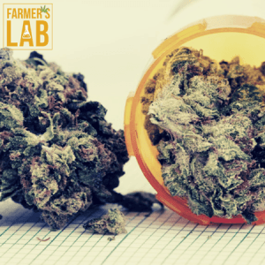 Cannabis Seeds Shipped Directly to Your Door in Rouyn-Noranda, QC. Farmers Lab Seeds is your #1 supplier to growing Cannabis in Rouyn-Noranda, Quebec.